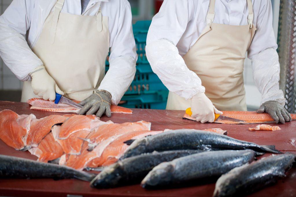 Consumo seguro de pescados y mariscos